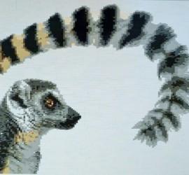 Lemur Mosaic